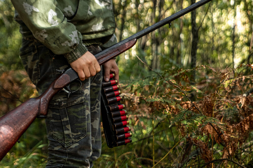 A hunter in the woods with a shotgun and shells.