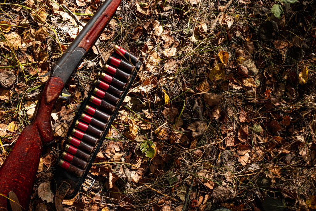 A shotgun with shells on a bed of leaves.