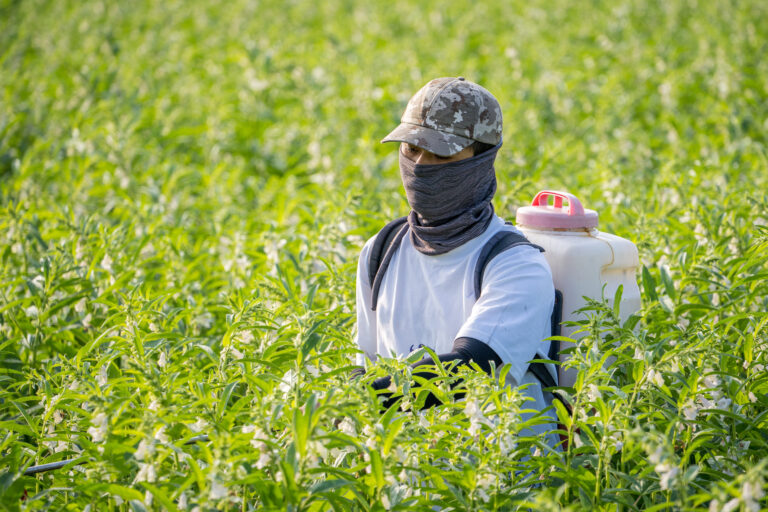 A young man farmer master is spraying pesticides (farm chemicals